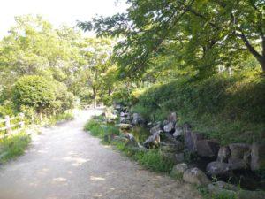 公園の風景写真